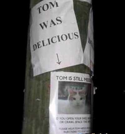 Tom is delicious